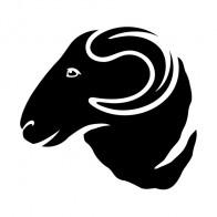 Ram Head 03409