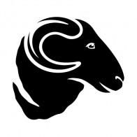 Ram Head 03410