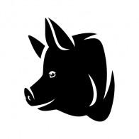 Pig Head 03419