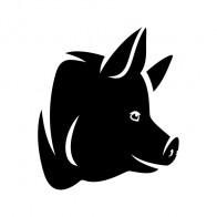 Pig Head 03420