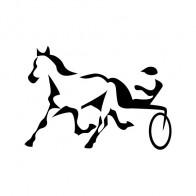 Harness Racing 03472