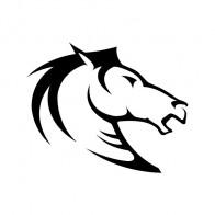 Horse Head 03524