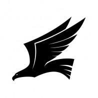 Eagle Figure 03596