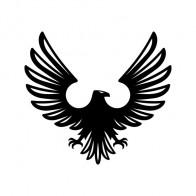 Eagle 03693