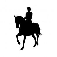 Horse Riding 03761