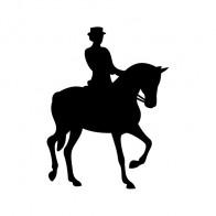 Horse Riding 03769