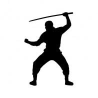 Martial Arts Ninja Warrior 03836