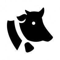 Cow Head 04150