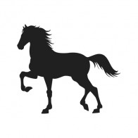 Horse 04305