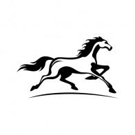 Horse 04316