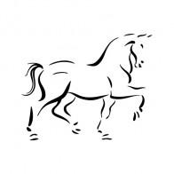 Horse 04318