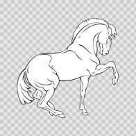 Royal Horse 04354