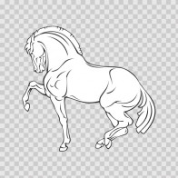 Royal Horse 04355