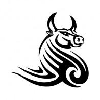 Bull Tribal 04407