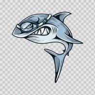 Shark Diving 04715