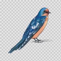 Wild Bird 04720