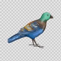 Wild Bird 04721