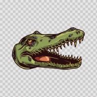 Alligator  04774