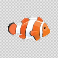 Aquarium Fish 05101