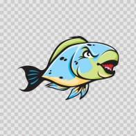 Parrotfish 05122