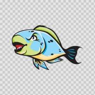 Parrotfish 05123