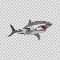 Predator Shark 05132