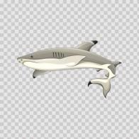 Shark 05144