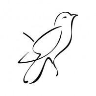 Bird 05505