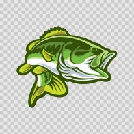 Bass Fishing 05755