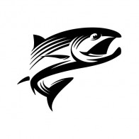 Salmon 05900