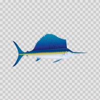 Sailfish Marlin 05926