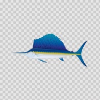 Sailfish 05927