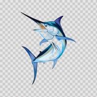 Sailfish Marlin 05960