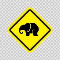 Elephant 06142