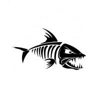 Skeleton Fish Bones 06159
