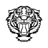 Tiger Head 06327