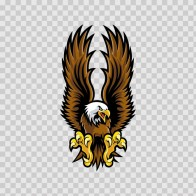 Eagle Hawk 07101