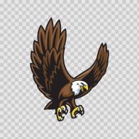 Bald Eagle 07108
