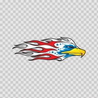 Eagle Hawk Head Flames 07118
