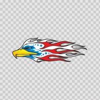Eagle Hawk Head Flames 07119
