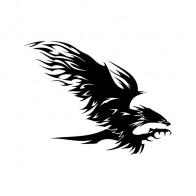 Eagle Attack 07143