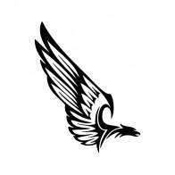 Eagle 07146