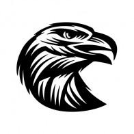 Eagle Head Engrave Style 07155
