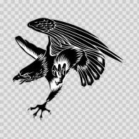 Eagle Attack 07210