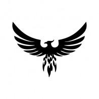 Eagle Hawk Phoenix 07211