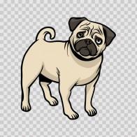 Dog Pug 07366