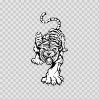 White Tiger 08385