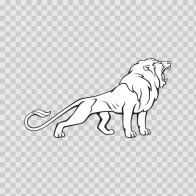 Wild Cat 08399