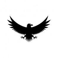 Eagle Symbol 09053