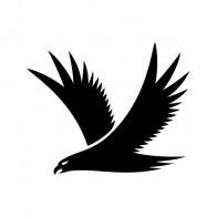 Eagle Symbol 09457